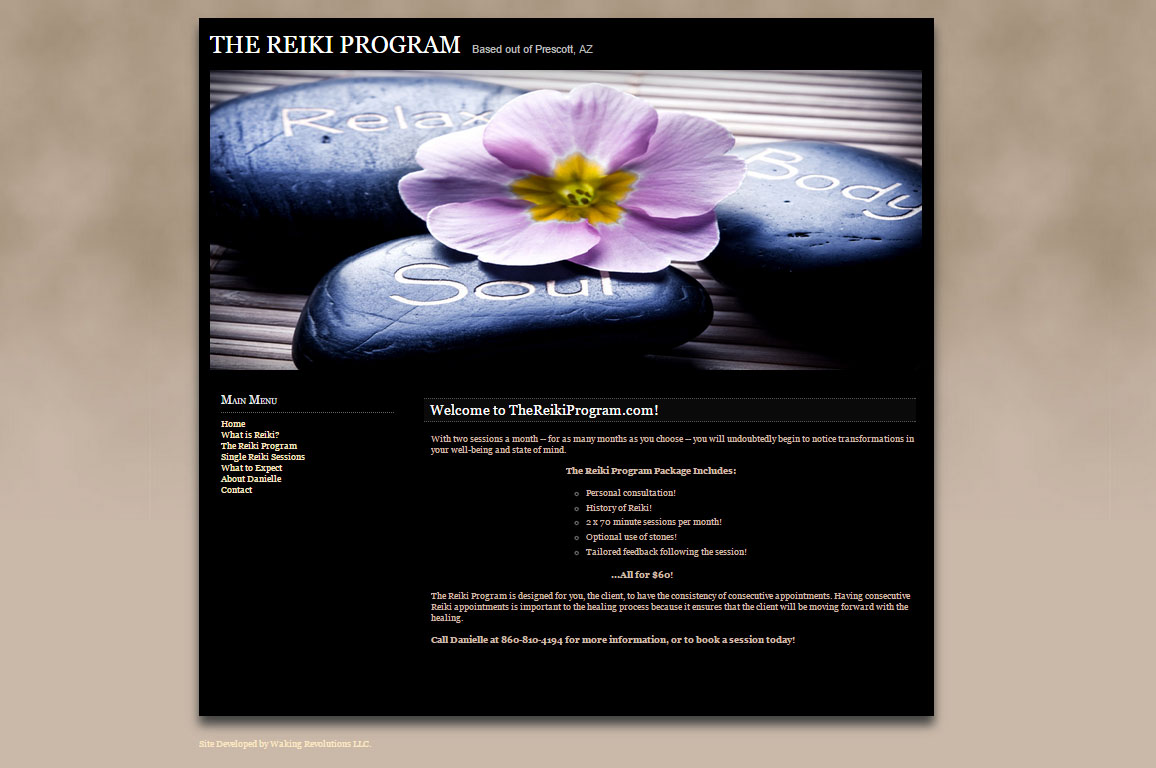 The Reiki Program